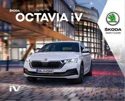 Angebote von Škoda im Škoda Prospekt ( Mehr als 30 Tage)