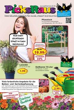 Picks Raus Katalog ( 8 Tage übrig )