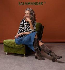 Angebote von Salamander Schuhe im Salamander Schuhe Prospekt ( 24 Tage übrig)