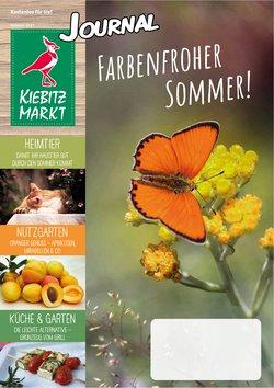 Angebote von Kiebitzmarkt im Kiebitzmarkt Prospekt ( Mehr als 30 Tage)