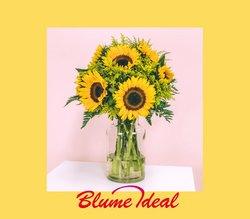 Blume Ideal Katalog ( Abgelaufen )