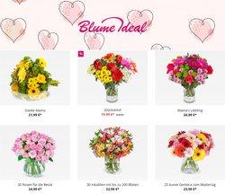 Blume Ideal Katalog ( Neu )