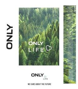 Only Katalog ( Gestern veröffentlicht )