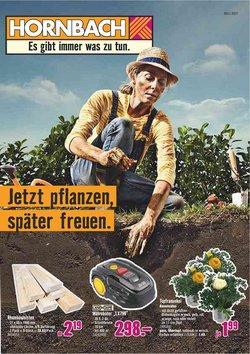 Hornbach Katalog ( Gestern veröffentlicht )