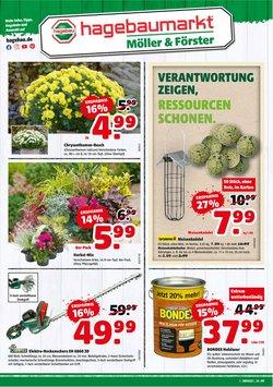Angebote von Baumärkte und Gartencenter im Hagebaumarkt Prospekt ( Läuft morgen ab)
