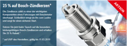 Angebote von Bosch Car Service im Berlin Prospekt
