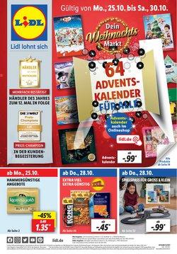 Lidl Katalog ( 10 Tage übrig)