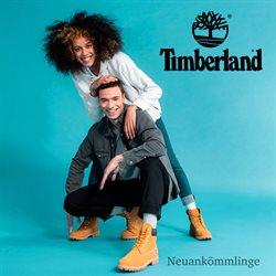 Timberland Katalog ( Abgelaufen )