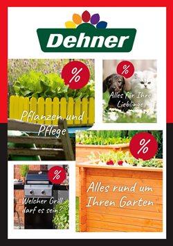 Dehner Katalog ( Vor 2 Tagen )