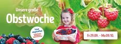 Angebote von Gartencenter Holland im Berlin Prospekt