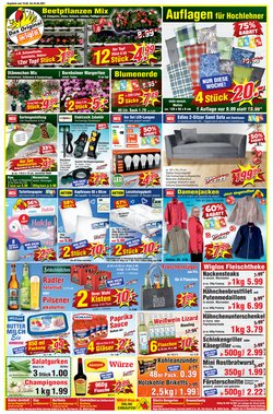 Wiglo Wunderland Katalog ( 2 Tage übrig )