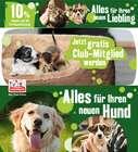 Fressnapf Katalog in Hamburg ( Abgelaufen )