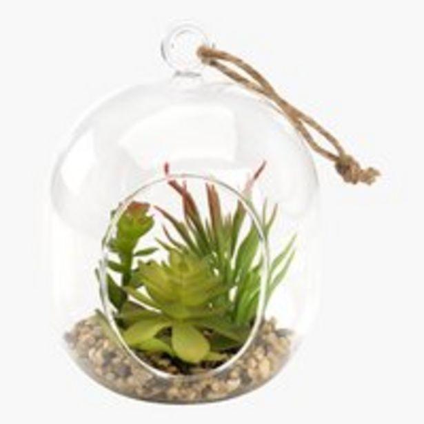 Kunstpflanze VIGO Ø12xH15cm Glas für 7€