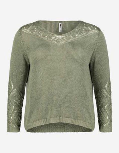 Damen Pullover aus Grobstrick für 9,99€